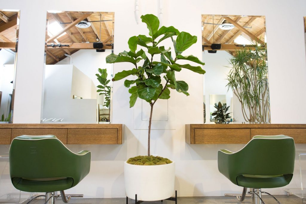 5-salon-interior-design-trends-to-energize-your-space